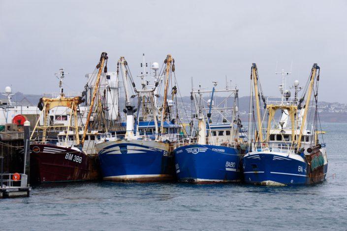 Day 16 - Fishing trawlers, Brixham