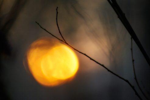 2011_365048 - Lanterna