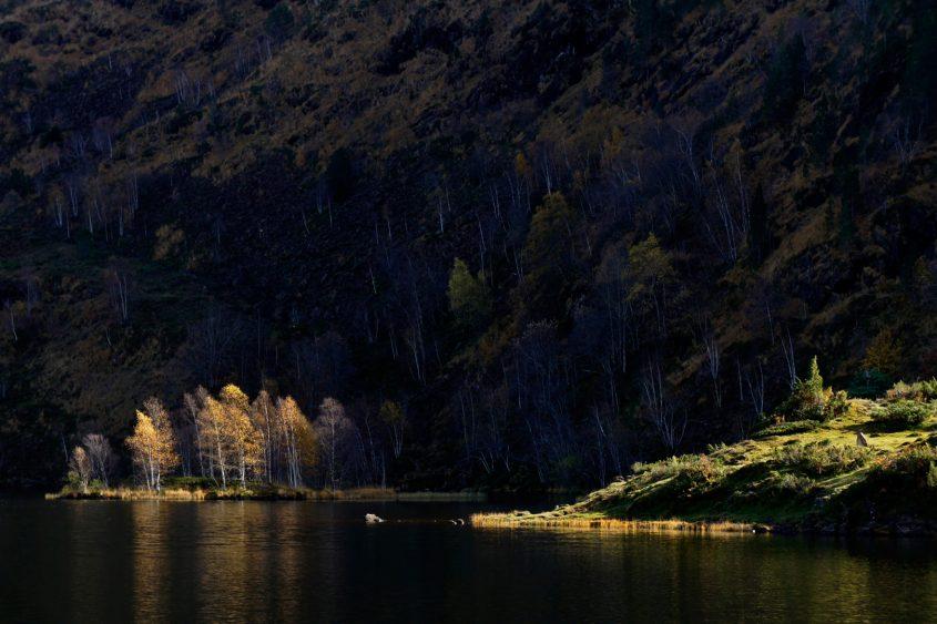 Autumn colour, Etang de Lers, Ariège Pyrenees, France - Image by Touching the Light